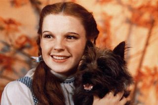 Hollywood no tempo de Judy Garland