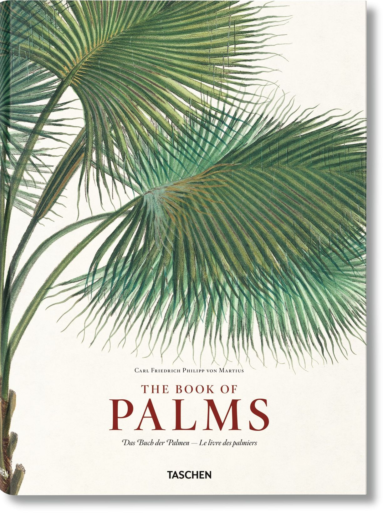 The Book of Palms, Taschen, €100